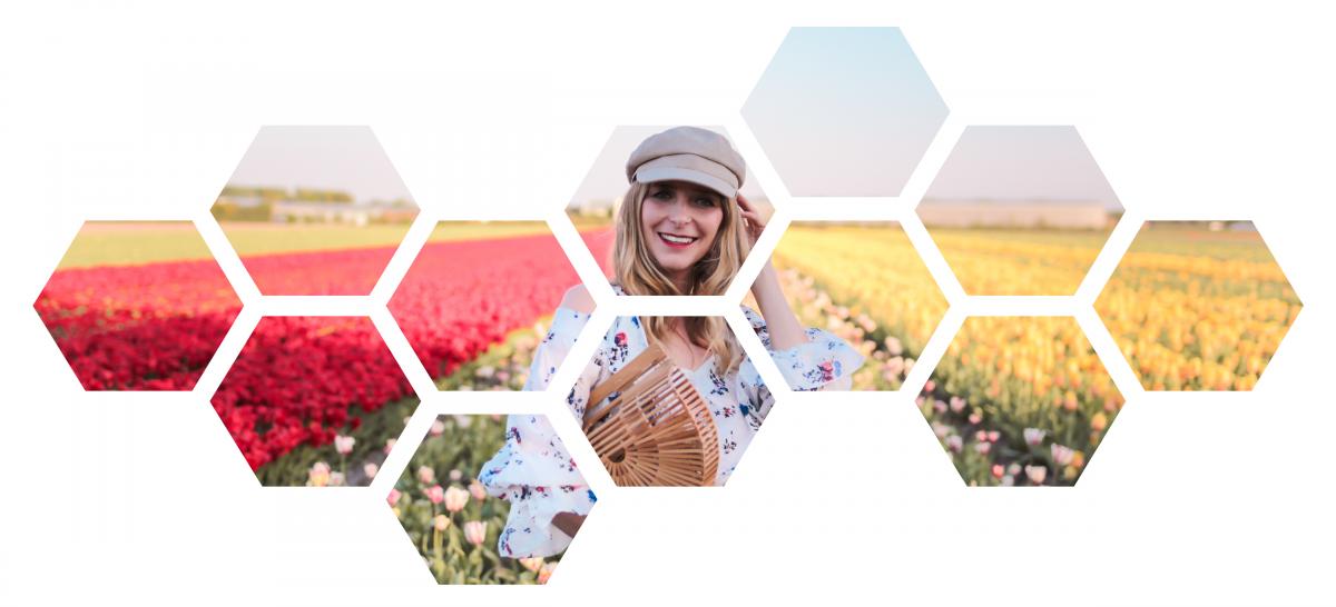 honeycomb slide 1-01 – Kopie